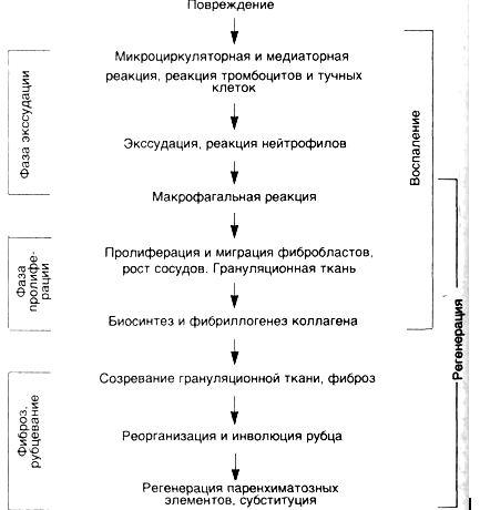 Патологический процесс в кишечнике | компью́терная томогра́фия.