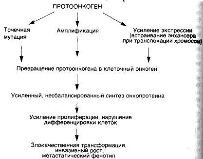 Рассматривая различные теории