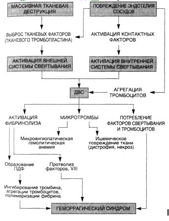 Двс синдром патологическая анатомия
