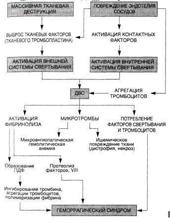 ДВС-синдрома сложен (схема