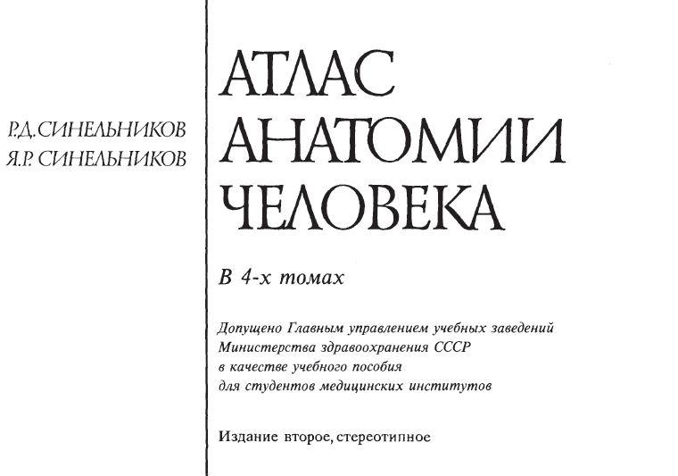 Атлас синельникова в word